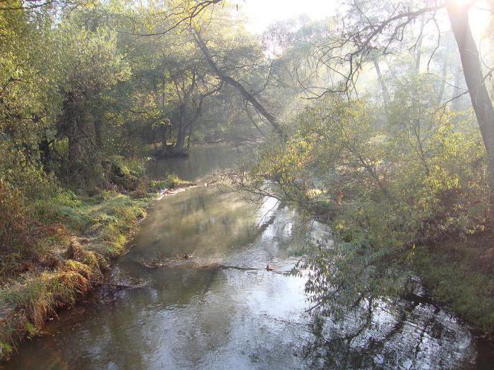 kje teče reka pehorka