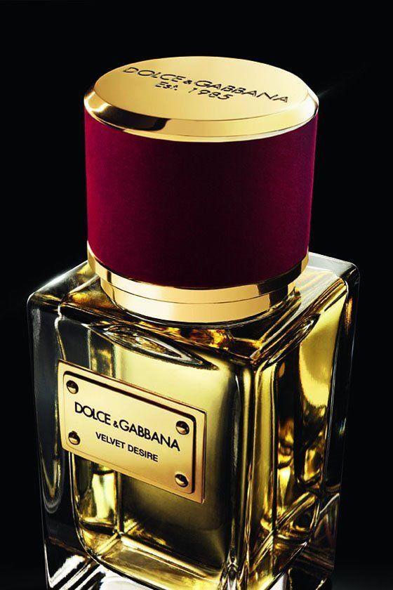 Kolekcja Velce z kolekcji Dolce & Gabbana
