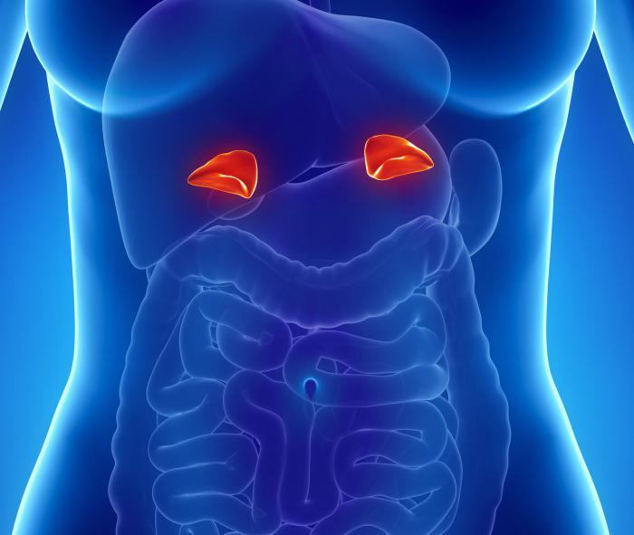 феохромоцитома код деце