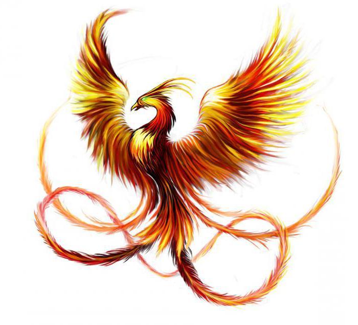 Tatuaż Phoenix Szkice I Opcje