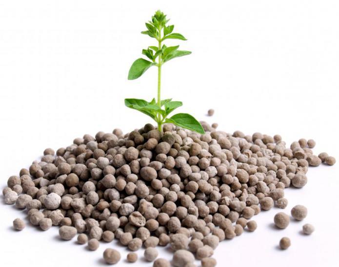fosfatna gnojiva