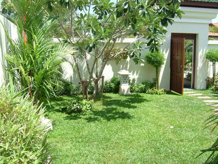 phu view talay resort 3 pattaya