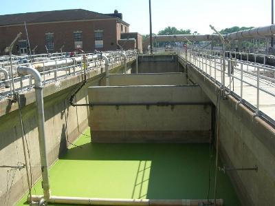 biologické metody čištění odpadních vod