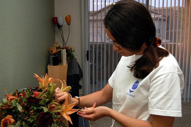 stimulansi rasta biljaka kod kuće