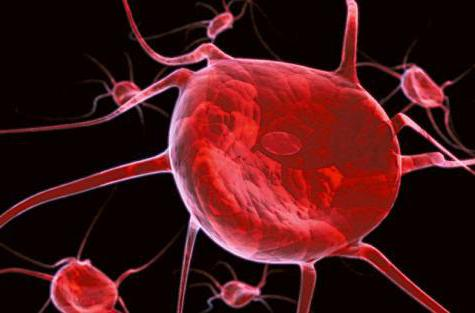 trombocita u krvi