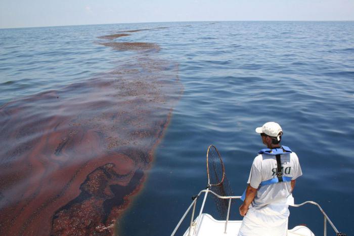 inquinamento della foto degli oceani