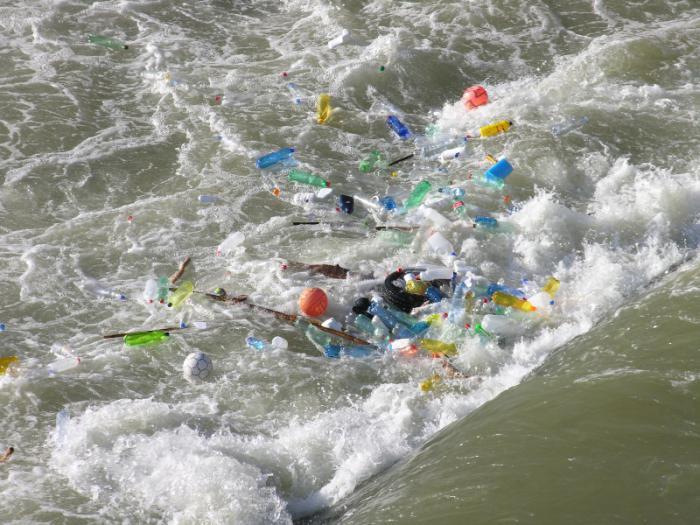 effetti dell'inquinamento degli oceani