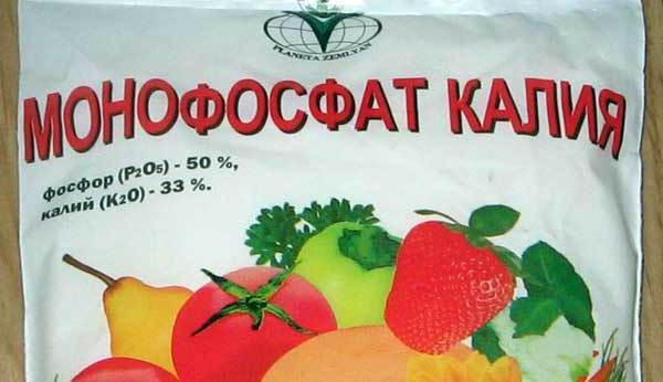 приложение на калиев монофосфат за домати