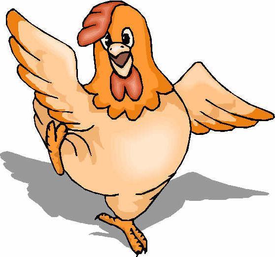 tecnologia del pollame
