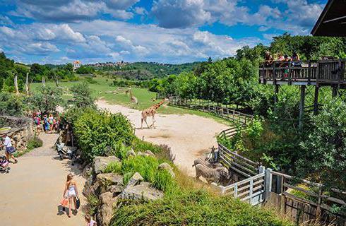 Снимка на зоопарка в Прага