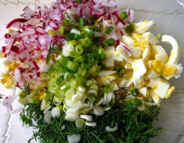 salata od svježe rotkve