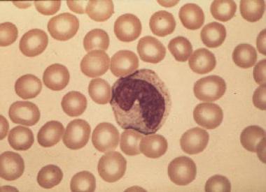 брой на тромбоцитите