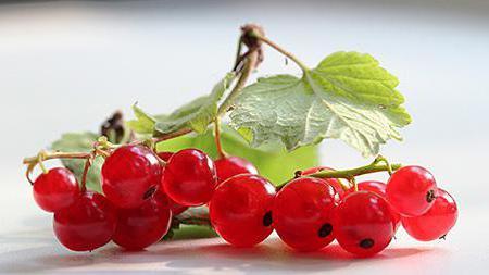 име на червени плодове
