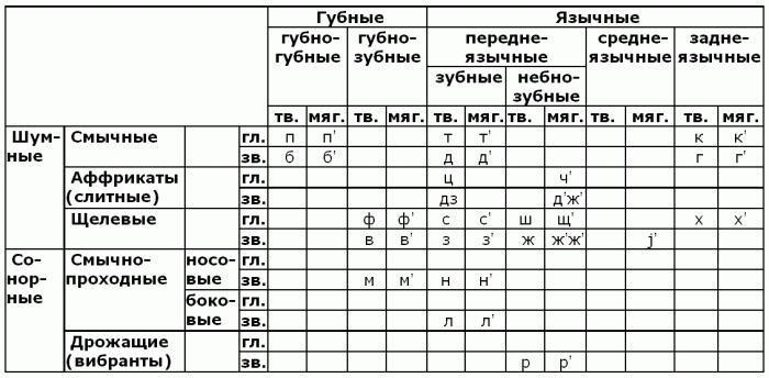termin językowy