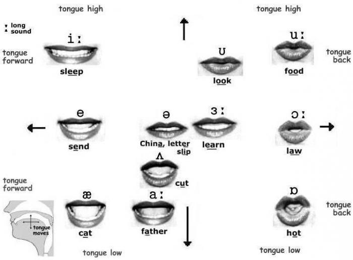 redukcja języka