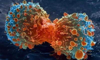 рецидив на рак