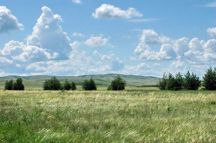 Orenburg rezerwy