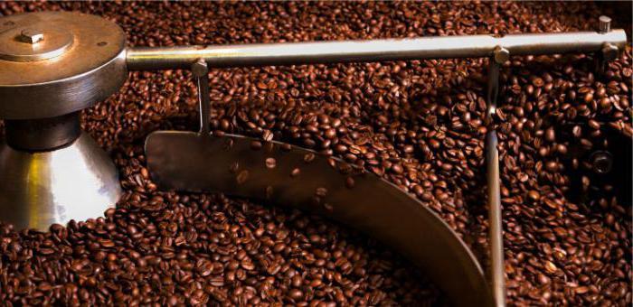 kava bushido Cena