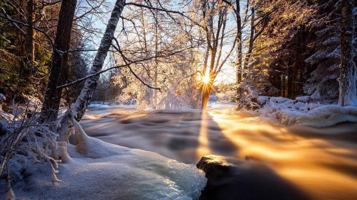 Ruska narava