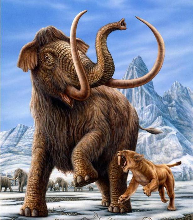mamuty i tygrysy szablozębne