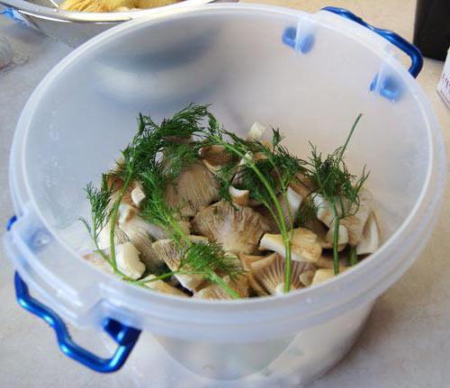 salatura a caldo di burrone secco