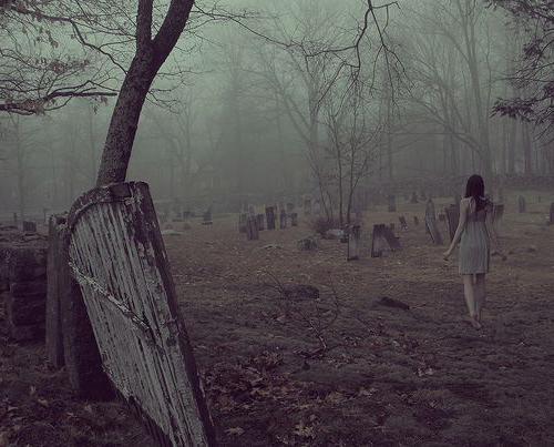 cerca un cimitero da sogno