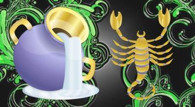 compatibilità con scorpioni e acquari