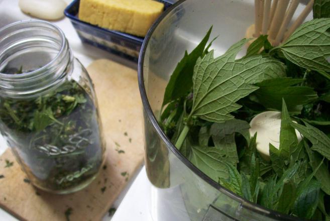 ricetta casalinga motherwort tintura