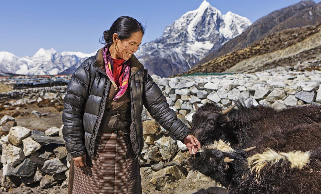 donna sherpa