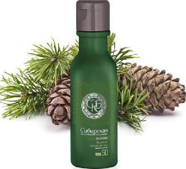 massaggio raccolta radice siberiana di balsamo