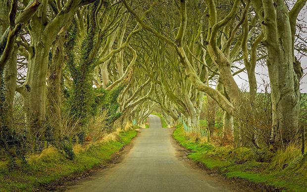turné do irska
