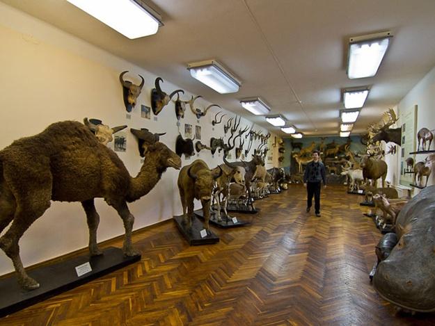 Muzej v Harkovu