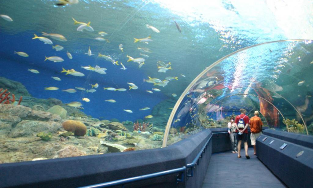 Oceania di Pattaya