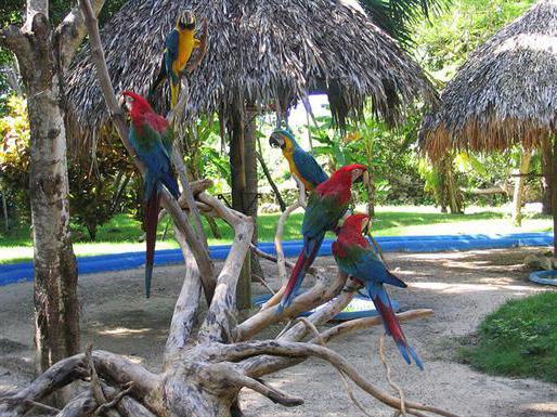 Santo Domingo attrazioni della Repubblica Dominicana