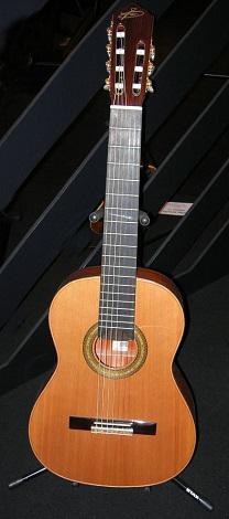 chitarra a sette corde