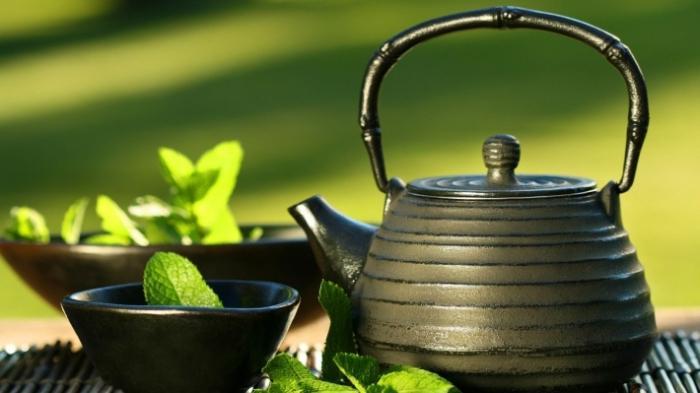 ricette di erbe dimagranti