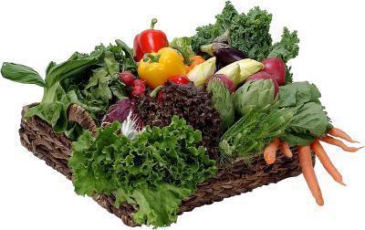 namirnice s sporim ugljikohidratima