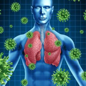 polmoni a raggi X decodificanti