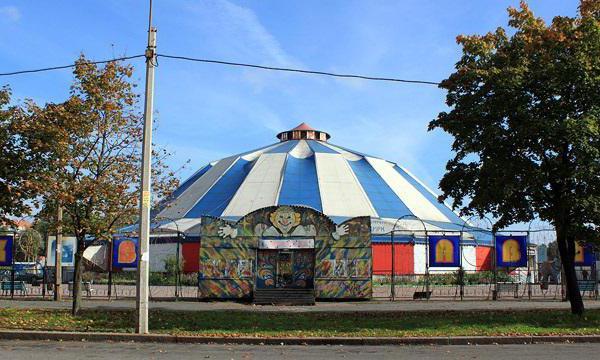 cirkus u auto showu