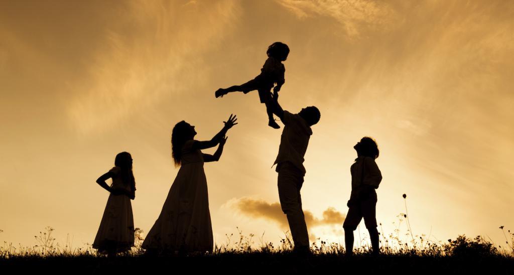 Vesela družina