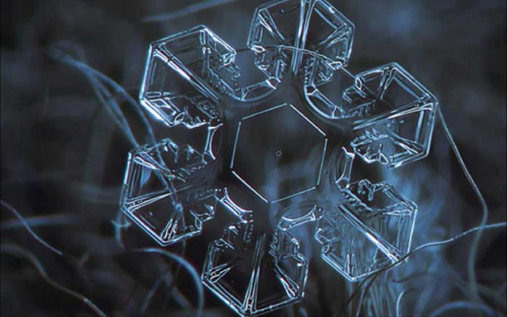 vodeni led