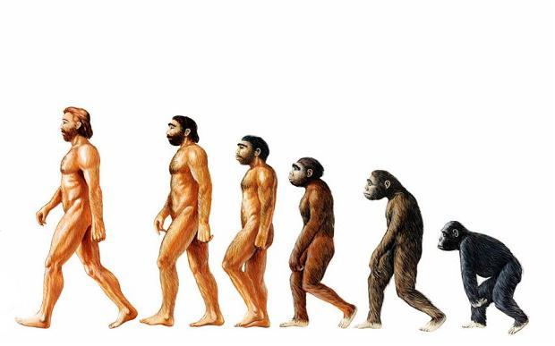 ewolucja życia