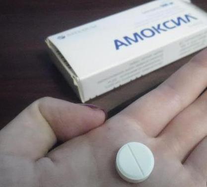 Amoksil 250 istruzioni per l'applicazione