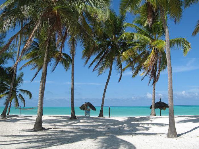 Африка Остров Занзибар