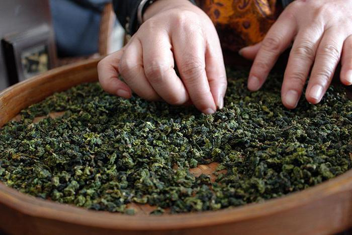 cravatta verde tè guan yin