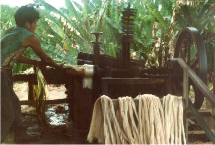 banana tekstil za nautičke užadi