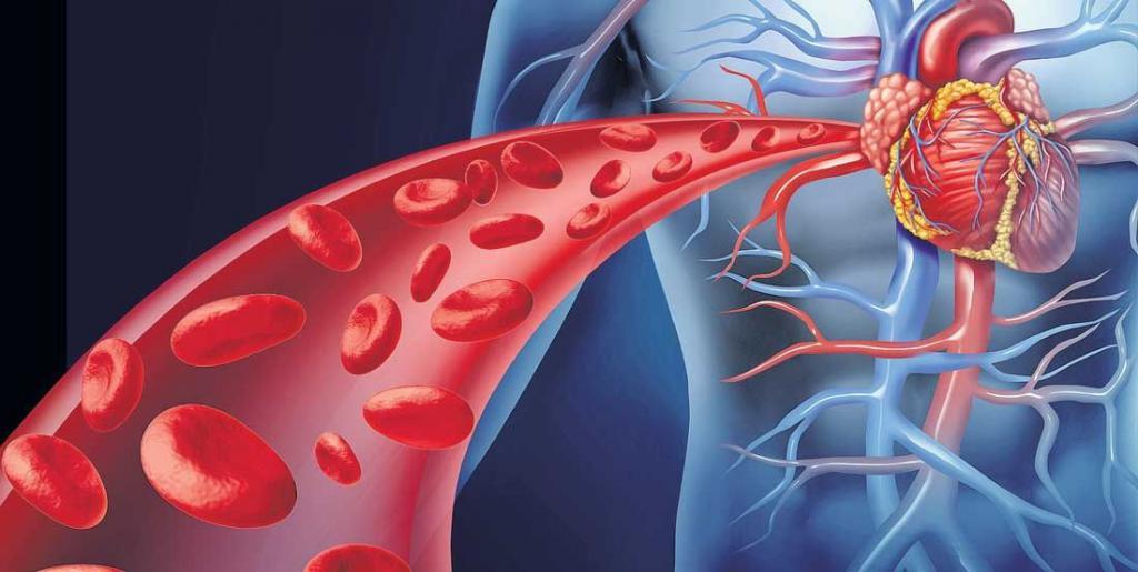 maternične arterije