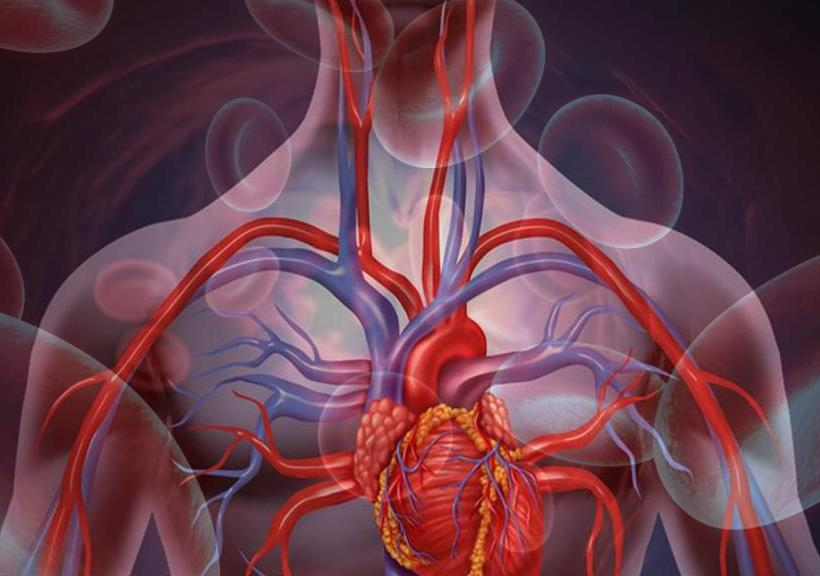 levo arterijo