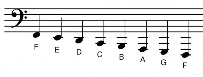 bass clef note note