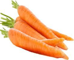 użycie marchewki